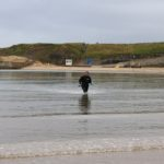 Press release: Bathing water investigation continues